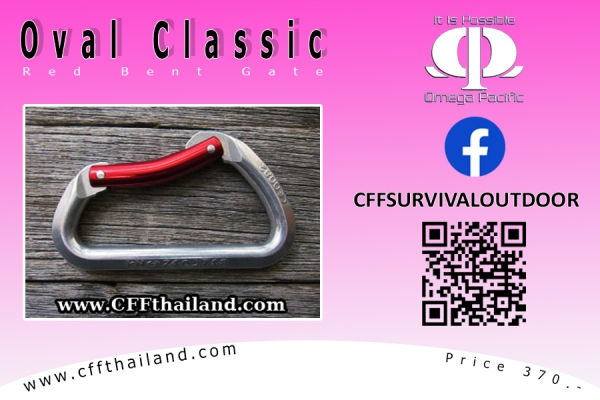 Carabiner Classic Red Bent Gate