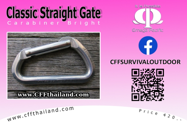 Carabiner Classic Straight Gate...